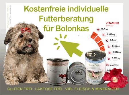Bolonka Futter Berater