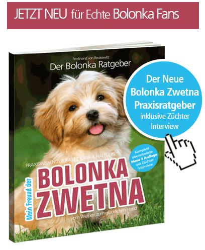 bolonka_buch_rechts